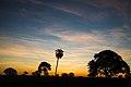 Pôr do sol no cerrado 06.jpg