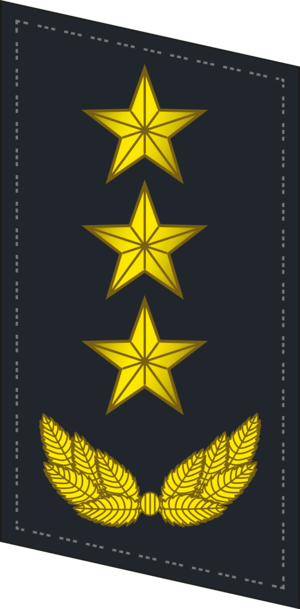 Ranks of the People's Liberation Army Navy - Image: PLANF Collar 0720 GEN