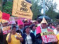 PRD activists at rally.jpg