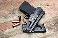 PSS Silent Pistol (543-46).jpg