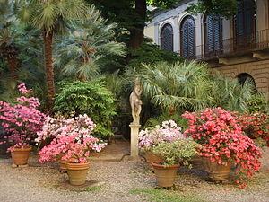 Palazzo Malenchini Alberti - View of the garden