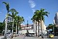 Palmen und Rua da Lapa 1 (21929121089).jpg
