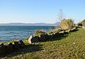 Panorama of Lake of Bracciano 4.jpg