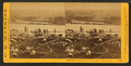 Panorama of Portland and the Willamette River, Oregon, by Watkins, Carleton E., 1829-1916 2.png