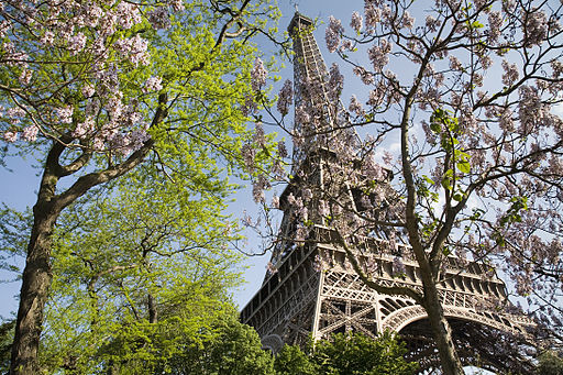 Paris - The Eiffel Tower in spring - 2307
