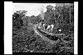 Passageiros no Vagão-Plataforma do Trem, na Altura do Quilômetro 151 da Ferrovia Madeira-Mamoré - 1107, Acervo do Museu Paulista da USP.jpg