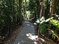 Path near platypus area.JPG