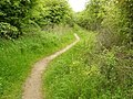 Path to Bunny from the Old Wood - geograph.org.uk - 1335543.jpg