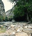 Peisazh i mrekullueshem ne vjeshte nga lumi ne Gryken e Rugoves.jpg