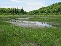 Penokee wetland - panoramio.jpg
