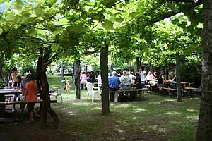 Osteria - Garden of an osteria in Giumaglio, in the Italian-speaking Canton Ticino, Switzerland