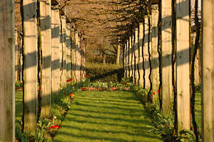 Les Parterres in the Bercy gardens of Paris (France)