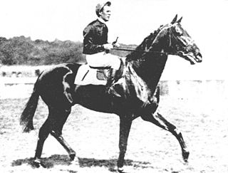 Pharis (horse) French-bred Thoroughbred racehorse