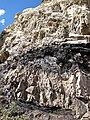 Phosphoria Formation (Permian; Astoria Hot Springs roadcut, Teton County, Wyoming, USA) 10 (49191686713).jpg