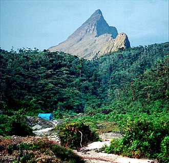 Amazon biome - Pico da Neblina on the Brazil–Venezuela border. The Pico da Neblina National Park has a variety of ecosystems.