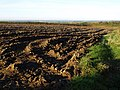 Ploughed field at Rivaton - geograph.org.uk - 578137.jpg