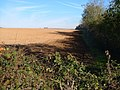 Ploughed field north of Lee Mill - geograph.org.uk - 274939.jpg