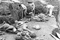 Pompei, scavo vittime.jpg