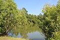 Pond - panoramio (36).jpg
