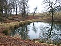 Pond at Hardwick - geograph.org.uk - 654546.jpg