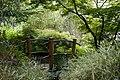 Pont japonais au jardin botanique de la Charme.JPG