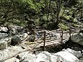 Ponte sul torrente.jpg