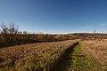 Prairie Bush Clover Scientific and Natural Area (24938420698).jpg