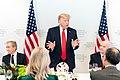 President Trump at Davos (49421740781).jpg