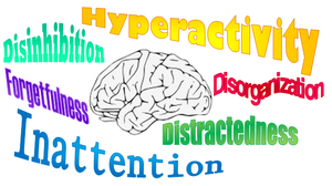 Symptoms of ADHD described by the literature