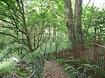 File:Public footpath around the western perimeter of Coed Plas Llanddyfnan Woods - geograph.org.uk - 515905.jpg
