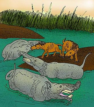 Oligocene - Pyrotherium romeroi with the notoungulate Rhynchippus equinus