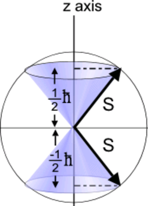Stern–Gerlach experiment - Spin values for fermions