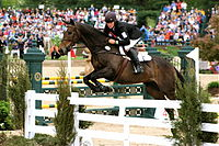 Proper show jumping attire, as seen in the show jumping phase of a three-day event. Attire at an event includes a mandatory armband as seen here, although the armband is not required in general show jumping.