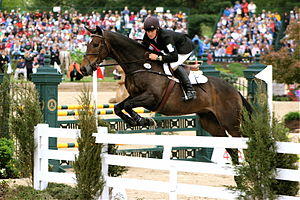 Show jumping - Proper show jumping attire, as seen in the show jumping phase of a three-day event. Attire at an event includes a mandatory armband as seen here, although the armband is not required in general show jumping.