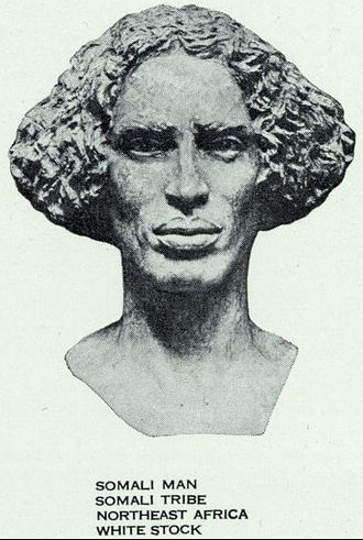 Ethiopid race - Somali man of Eastern Hamitic type (sculpture of The Races of Mankind series, 1929).