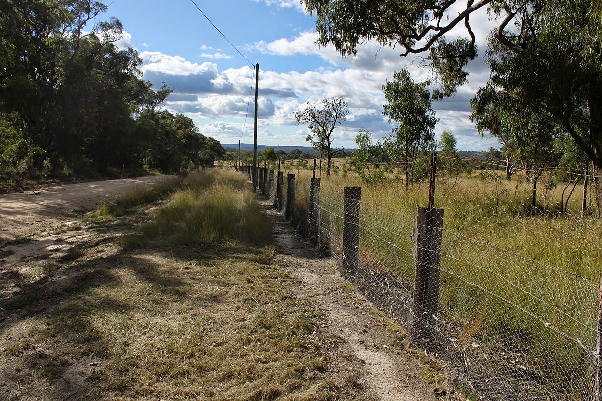 Rabbit proof fence help to