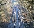 Railway line near Kirby Muxloe - geograph.org.uk - 703299.jpg