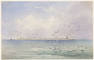Raine Island - Raines Islet on the Great Barrier Reef by Edwin Augustus Porcher, painted 1844