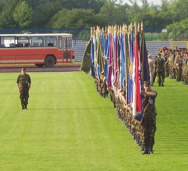 Datoteka:Ratne zastave Dan OSRH 2008.jpg