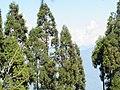 Ravangla, Sikkim by Masum Ibn Musa (163).jpg