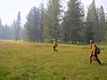 Reading fire 2012 - Firefighters scouting for spot fires.jpg