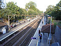 Rectory road station 1.jpg