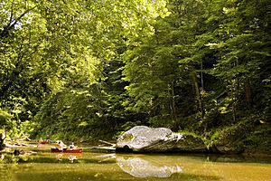 Red River (Kentucky River) - Red River in the Red River Gorge Geological Area