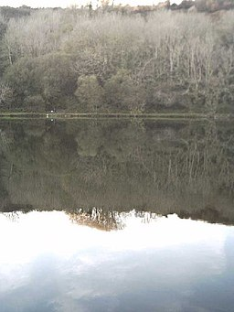 Reflection, Lower Slade Reservoir - geograph.org.uk - 81436