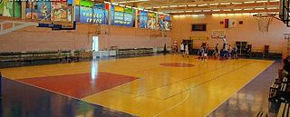 Russian State University of Physical Education, Sport, Youth and Tourism