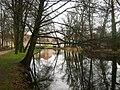Rheinsberger-Rhin-beim-Rheinsberger-Schloss-24-01-2008-217.jpg