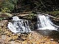 Ricketts Glen State Park Cayuga Falls 3.jpg