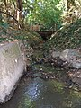 Riedgraben vor Einmündung in Seebach.jpg