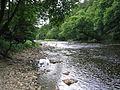 River Hodder.jpg