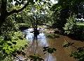 River Lew - geograph.org.uk - 536346.jpg